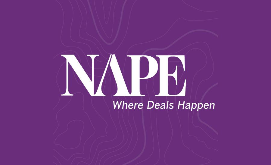 NAPE logo.